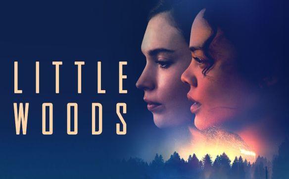The Quiet Brilliance of Nia DaCosta's 'Little Woods' | DiscussingFilm